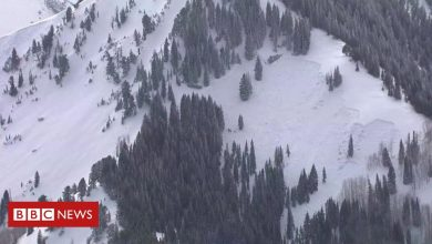 Photo of Utah avalanche: Four skiers killed after snowslide near Salt Lake City