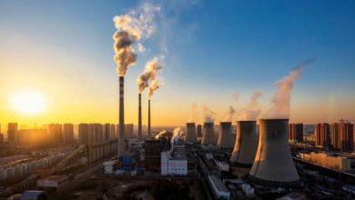 Photo of China has just launched world's largest carbon market