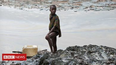 Photo of Shell in Nigeria: Polluted communities 'can sue in English courts'