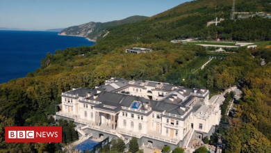 Photo of 'Putin's palace': Builders' story of luxury, mould and fake walls