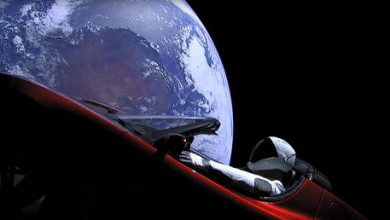 Photo of Elon Musk says he wants new Tesla Roadsters to fly 'without, you know, killing people'