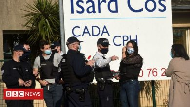Photo of Pau attack: Immigration official stabbed to death in France