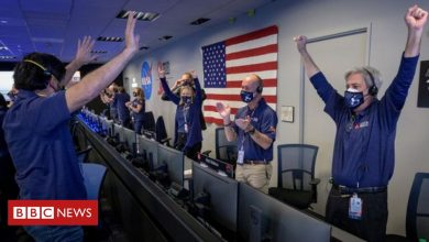 Photo of Mars landing: Excitement builds over new images from Nasa Perseverance rover