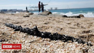Photo of Israel pollution: Tar globs disfigure coast after oil spill