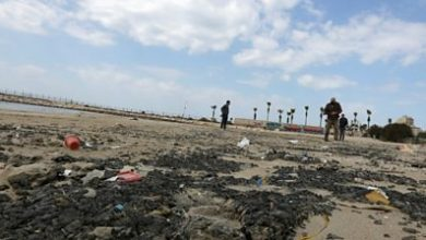 Photo of Clear-up of Israel's coastline after oil spill continues