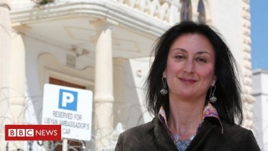 Photo of Daphne Caruana Galizia murder: Suspect pleads guilty
