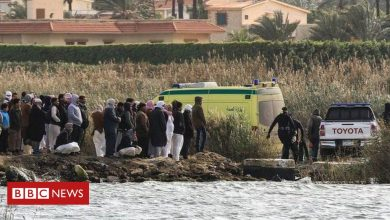 Photo of Nine die after boat carrying family capsizes in Egypt lake