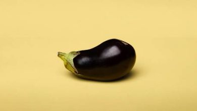 Photo of Short and sweet: Musk sends eggplant emoji in response to Peter Schiff's Twitter jab over bitcoin