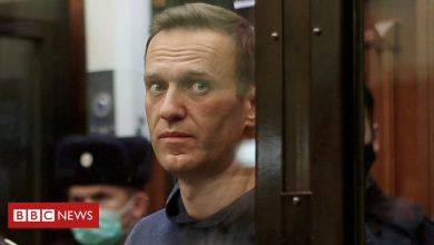 Photo of Alexei Navalny: Top Putin critic sent to Russian penal colony