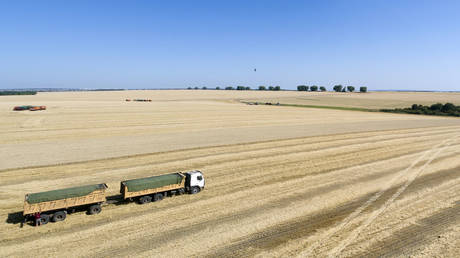 russia-doubles-wheat-export-tax-to-stabilize-domestic-food-prices