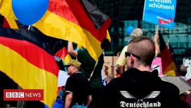 Photo of Germany to spy on far-right AfD party, reports say