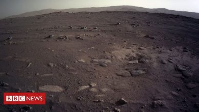 Photo of Mars: Nasa's Perseverance rover sends stunning images