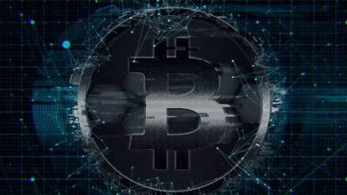 Photo of Bitcoin will replace ALL global currencies at price target of $1 MILLION within decade – Kraken CEO