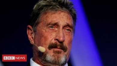 Photo of John McAfee charged with fraud over cryptocurrency
