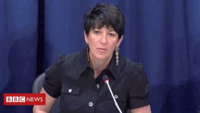 Photo of Ghislaine Maxwell's US jail conditions 'are torture' – brother