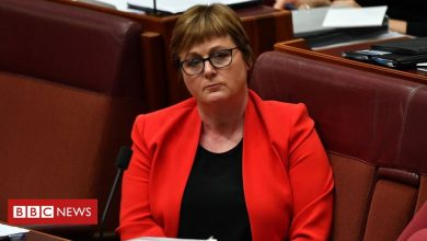 Photo of Linda Reynolds: Australian minister settles case after calling aide 'lying cow'