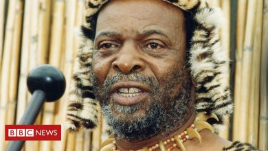 Photo of Goodwill Zwelithini: South Africa's straight-talking Zulu king