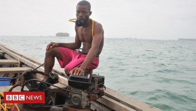 Photo of Sea-cucumber divers off Liberia risk danger to feed a hunger in China