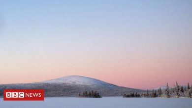 Photo of Finland ranked happiest country in the world – again