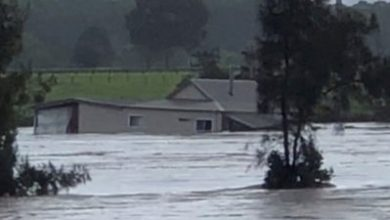 Photo of Australia floods: Couple's house swept away near Sydney