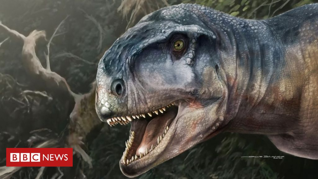 skull-of-dinosaur-called-'one-who-causes-fear'-found-in-patagonia