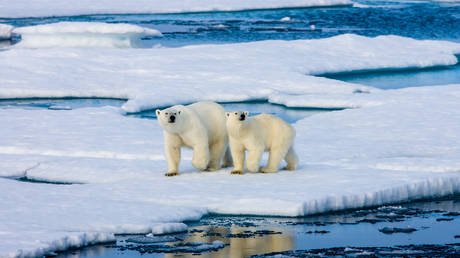 russia-to-invest-nearly-$100-million-to-develop-vessel-for-arctic-survey