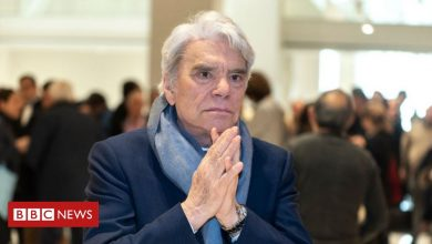 Photo of Bernard Tapie: French tycoon and wife attacked in home
