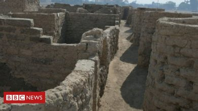 Photo of 'Lost golden city' found in Egypt reveals lives of ancient pharaohs