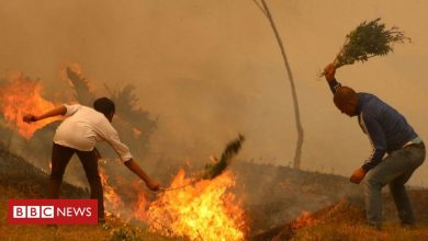 Photo of Why India and Nepal's forest fires are worrying scientists