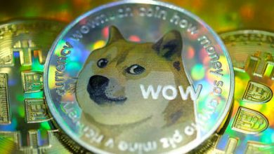 Photo of 'Barking at the Moon': Dogecoin skyrockets 300% in a week, sparking bubble fears