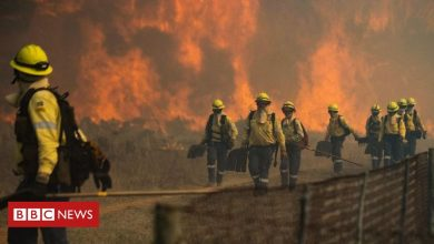 Photo of Table Mountain fire: Historic buildings destroyed in Cape Town