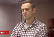 Photo of Russia will face 'consequences' if Navalny dies – US