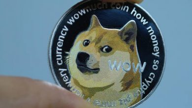 Photo of Dogecoin plunges after meme-inspired crypto frenzy pushed its market value higher than Twitter