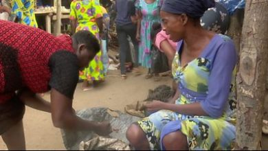Photo of Nigeria: The community that trades by barter instead of money