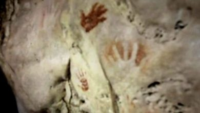 Photo of Handprints discovered in ancient Mayan cave