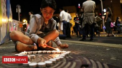 Photo of Israel crush: Day of mourning after dozens killed at Jewish festival