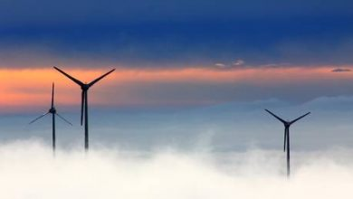 Photo of Wind power can add more than 3 MILLION new jobs worldwide over next 5 years – report