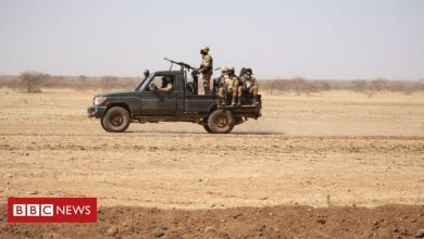 Photo of Around 30 reportedly killed in Burkina Faso village attack