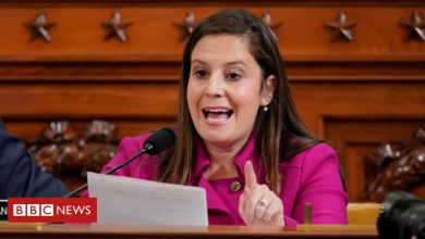Photo of Elise Stefanik: from Republican moderate to Trump favourite