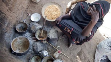 Photo of At least 155 million people globally facing food crisis, with 20 million added last year – report