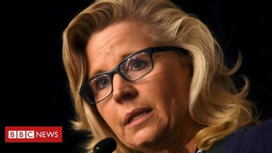 Photo of Liz Cheney: Republican ousted from leadership for challenging Trump election claims