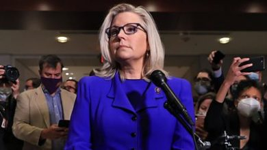 Photo of Liz Cheney: Why her sacking by the Republican Party matters