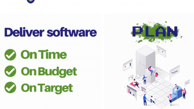 Photo of VIFBOX: You Need To Know For Software Development Team
