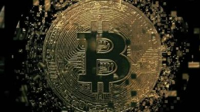 Photo of Crypto crash? Bitcoin loses half its value from year's high
