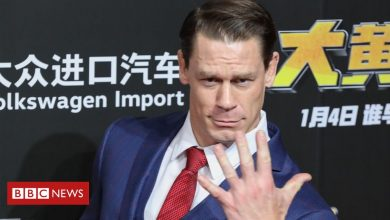 Photo of John Cena: Fast and Furious star sorry over Taiwan remark backlash