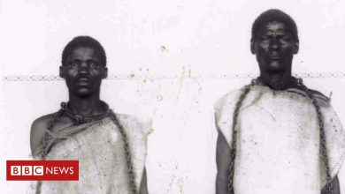Photo of Viewpoint: Why Germany's Namibia genocide apology is not enough
