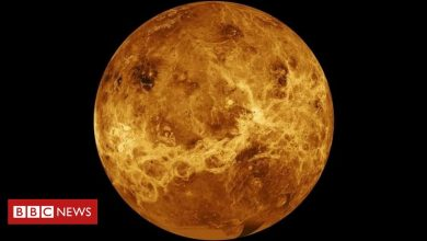 Photo of Venus: Nasa announces two new missions