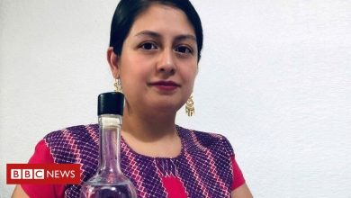 Photo of Mezcal producers hope to toast brighter future