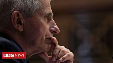 Photo of White House defends Dr Fauci over lab leak emails