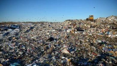 Photo of 'Garbage will never end': Russia bets on waste-to-energy plants